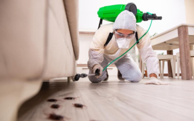4 Pest Management Solutions for Commercial Properties
